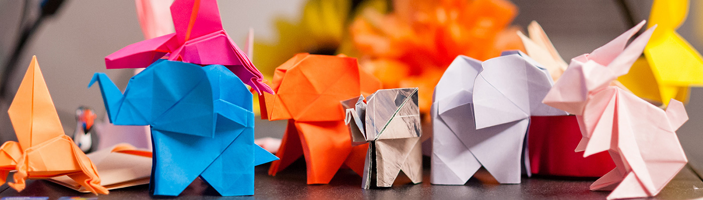 coloured paper animals